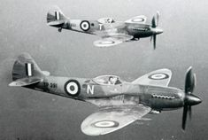 Spitfire FR18s of 208 Sqn - photo Crown Copyright