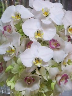 Phalaenopsis Orchids:  see how the centers have different colors?  This way the centerpiece is white, but can reflect some of your color palate.