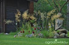 Ogród z rzeźbą - strona 177 - Forum ogrodnicze - Ogrodowisko