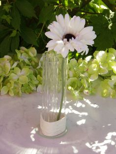 These plain glass vase is a perfect table accent for your wedding reception or other festive occasion!  The vase is made of three glass tube