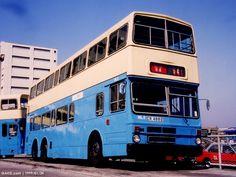 China Motor Bus, Hong Kong