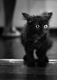 What, a bath??????