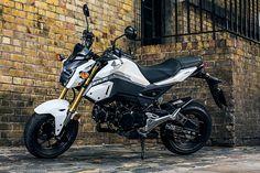 Pour 2016, la Honda MSX 125 adopte des lignes de Streetfighter encore plus agressives