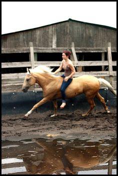 Bare back, no reins, more fun<3 love riding bareback :)