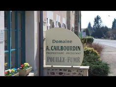 Wijnbuisvrienden 37 - Sauvignon de Pouilly - YouTube