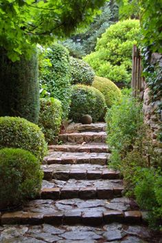 Mix of manicured/natural-shaped landscaping