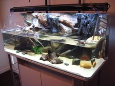Turtle Decorations For Home How To Turtle Home Decor In Aquarium Gt Home Decorating Ideas Amp Decor Style Aquatic Turtle Tank, Turtle Aquarium, Diy Aquarium, Aquarium Ideas, Turtle Enclosure, Tortoise Enclosure, Reptile Enclosure, Turtle Tank Setup, Turtle Tanks