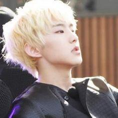 [SEVENTEEN] Hoshi (Kwon Soon Young)