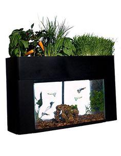 AquaSprouts Garden AquaSprouts https://www.amazon.com/dp/B01B4ZRVR4/ref=cm_sw_r_pi_dp_x_Dr31ybPPEQD4H
