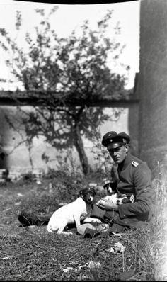 Soldier and Dogs  http://www.europeana1914-1918.eu/en/contributions/10808 #WWI #WorldWarOne #FirstWorldWar #WarPhotos #posters #HistoryPics #HistoryPhotos #History #War #WarMemories #TheGreatWar