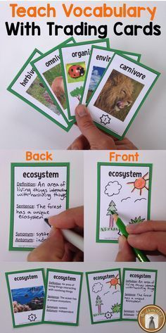 "Teach vocabulary with trading cards! Students write the vocabulary word and draw a picture on the front. On the back they write ""stats"" about the word like its definition or how to use it in a sentence."
