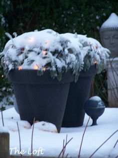 Christmas light glowing under a layer of snow....so beautiful