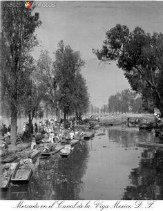 Fotos de Ciudad de México, Distrito Federal, México: Mercado y Cargadoeres en el Canal de la Viga