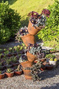 Stacked Terra Cotta Pots with Succulents - www.succulentsandsunshine.com
