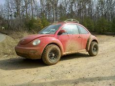 Love this off road New Beetle! I'd drive it every day! Volkswagen New Beetle, Cool Bugs, Baja Bug, Hid Headlights, Beach Buggy, Expedition Vehicle, Audi Tt, Vw Beetles, Offroad
