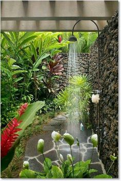 Indoor Container Gardening How to grow a tropical garden.beautiful outdoor shower - If you live in a house and you have at least small space called garden / backyard, you are lucky person. When you want to escape from the crowd, the Outdoor Bathrooms, Outdoor Rooms, Outdoor Gardens, Outdoor Living, Outdoor Baths, Outdoor Bedroom, Outdoor Kitchens, Outdoor Plants, Dream Garden