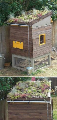 Eco-roof Chicken Coop | 15 More Awesome Chicken Coop Ideas and Designs | Cheap and Easy DIY Projects For Your Homestead by Pioneer Settler at http://pioneersettler.com/15-awesome-chicken-coop-ideas-designs/