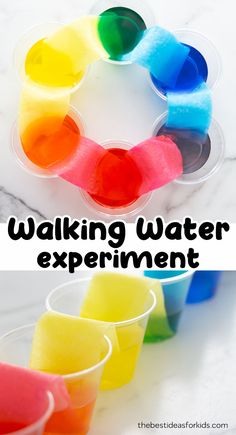 We love simple science experiments. And this one is really easy to set-up and the kids are always amazed at the end result. Learn about color mixing and capillary action in this easy walking water Water Experiments For Kids, Easy Science Experiments, Science Activities For Kids, Preschool Science, Science Projects, Projects For Kids, Preschool Activities, Science Daily, Summer Science