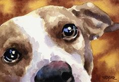 JACK RUSSELL TERRIER Dog Art Print Signed by by k9artgallery, $12.50