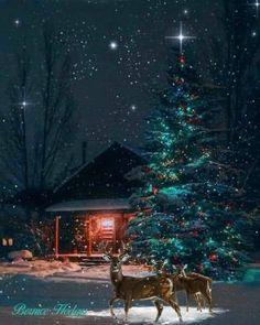Merry Christmas Gif, Christmas Scenery, Cosy Christmas, Vintage Christmas Cards, Retro Christmas, Country Christmas, Christmas Pictures, Beautiful Christmas, Christmas Themes
