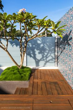 :The high life: a small rooftop garden with a plunge pool. Photography by Lina Hayes. From the December 2016 issue of Inside Out magazine: