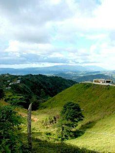 Nuestros campos, ,Puerto Rico