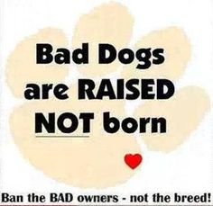 "Although I don't believe any dog is ""Bad.""  Scared, misunderstood, confused - yes.  Bad - no."