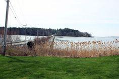 Macworth Island in Falmouth Maine