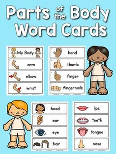 Free Parts of the Body Picture Word Cards for Preschool and Kindergarten.