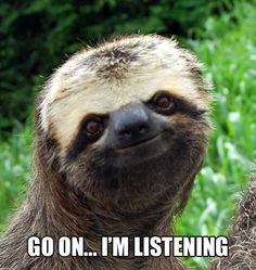 sloths are great listeners..