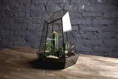 Beautiful handmade glass terrarium made in Russia. The measurements are: height 30 cm, width 23 cm. For more shapes, take a look here.