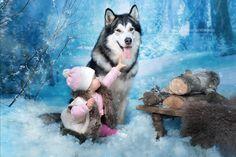 Winter Tales by Юлия Карпова on 500px
