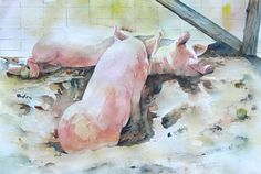 Pigs Original Watercolor  Two Pigs in the Sun by 6catsart on Etsy, $189.95