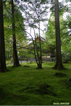 Sanzen-in Ohara, Kyoto, Japan
