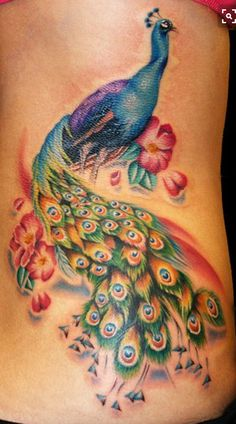Peacock tattoo Love