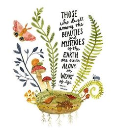 Mysteries of the Earth Watercolor Art Print, Hand Lettering, Rachel Carson Inspirational Quote, Rachel Carson Science Wall Art Pretty Words, Beautiful Words, Cool Words, Rachel Carson, Nature Quotes, Earth Day Quotes, Words Quotes, Time Quotes, Wisdom Quotes