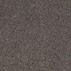 Carpeting In Style Storm Chaser Accent Color Freckles By
