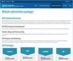 NYS Zone, Inc. provides SEO to make your website more visible for common search engines.
