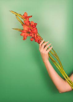 Exotic flower hand model Hand Modeling, Exotic Flowers, Instagram
