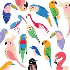 A seasonally inappropriate image for you this fine Tuesday 🐦 🐦🐦 Bird Illustration, Character Illustration, Pattern Art, Print Patterns, Illustrator, Kids Prints, Art Inspo, Sketches, Birds