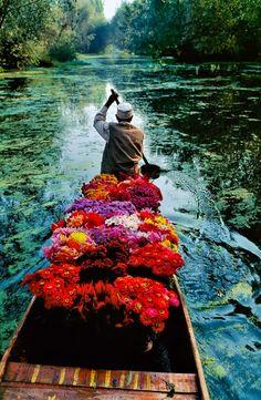 Il Lago Dal in #Kashmir. Scatto d'artista: Steve McCurry