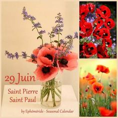 352 best ÉphÉmÉrİde seasonal calendar images on pinterest