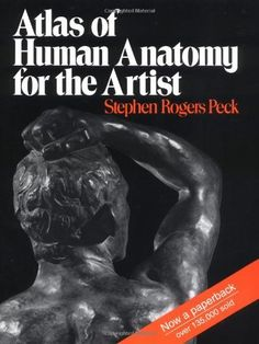 Atlas of Human Anatomy for the Artist (Galaxy Books) by Stephen Rogers Peck, http://www.amazon.com/gp/product/0195030958/ref=cm_sw_r_pi_alp_CGmUpb0P985SJ