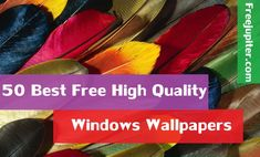 Windows wallpapers are of different types. There are so many sites which provide a massive collection of these Windows wallpapers. One can select their favourite Windows wallpapers from the given type of Windows wallpapers.