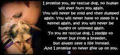 Promise to a rescue dog