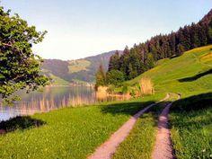 Walking - SeminarHotel am Ägerisee Walking, Country Roads, Places, Viajes, Woking, Hiking, Lugares