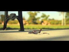 Faith | a short film - YouTube