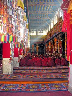 Monks gather in the great assembly hall at Drepung Monastery, Tibet.  (Lhasa, Tibet)