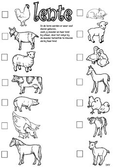 jonge dieren lente - Google zoeken Free Kindergarten Worksheets, Kindergarten Lessons, Teaching Kids, Kids Learning, Drawing Lessons For Kids, Printable Activities For Kids, Preschool At Home, Learning Through Play, Pre School