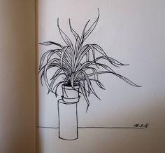 My quick plant sketch